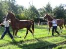 Leens 2011_28